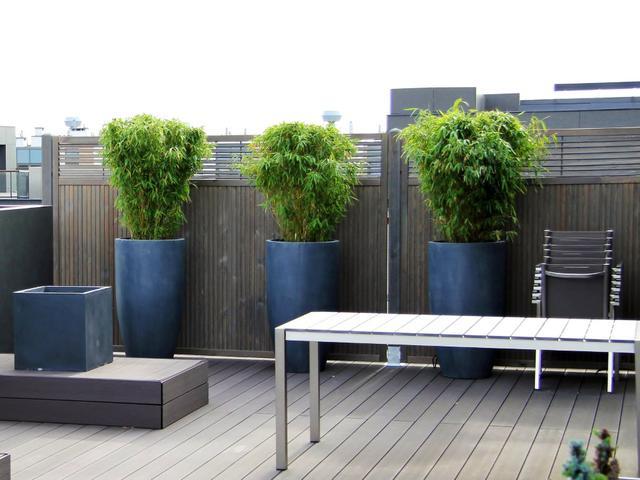 Deski Tarasowe I Ogrodzenia Drewniane Naturalny Azyl W
